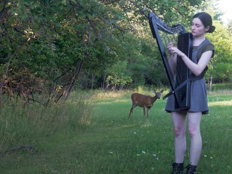 Lorsque votre session de harpe en plein air se transforme accidentellement en film Disney