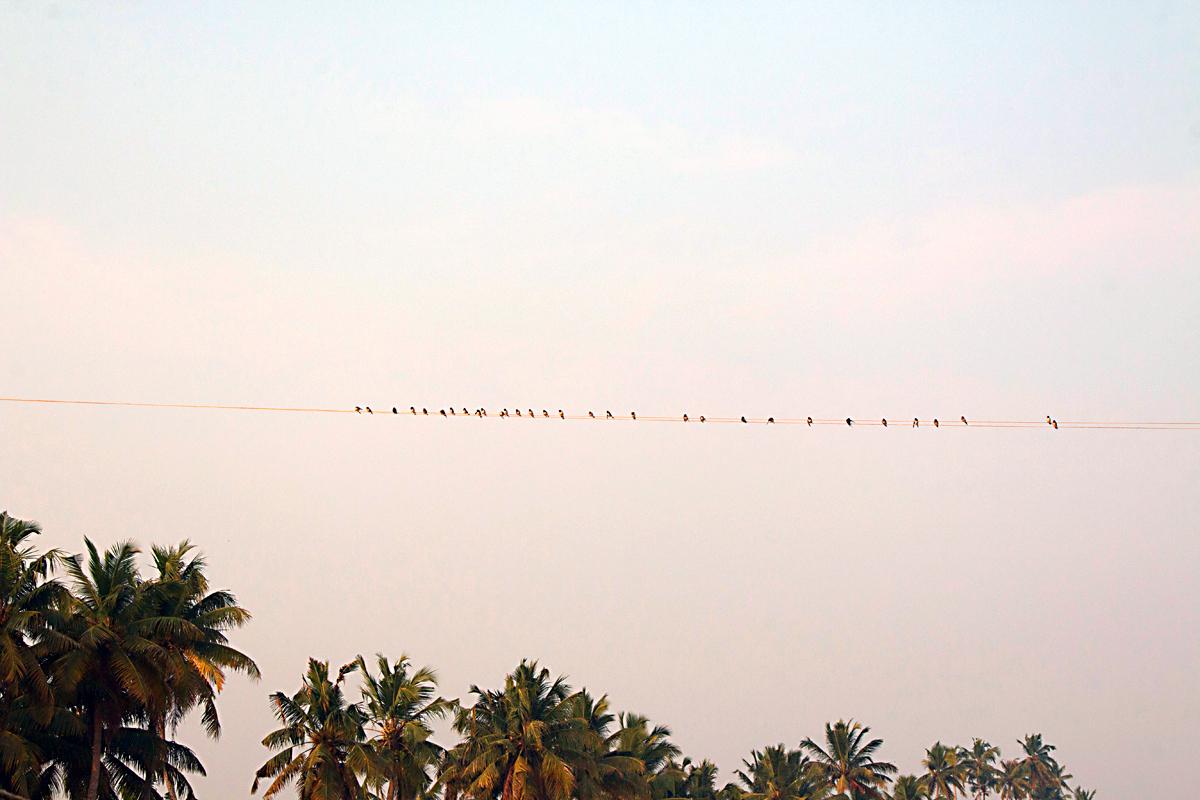 INDIEN Menschen Leben am Fluss FINEST-onTour 8647.jpg