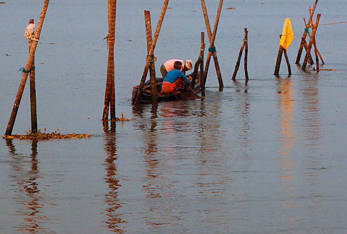 INDIEN Cochin Kerala Menschen Fischmarkt FINEST-onTour 8971.jpg