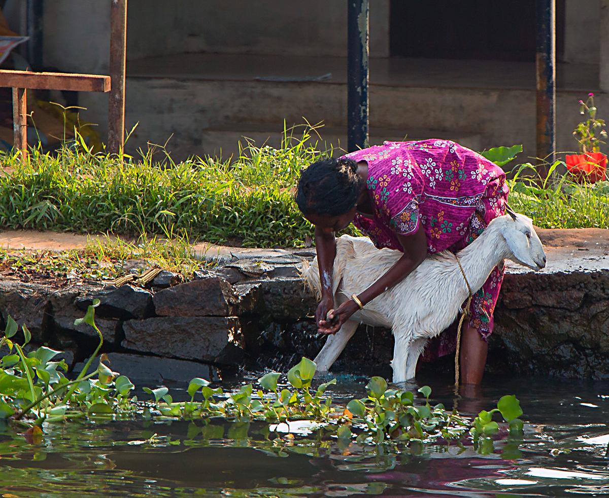 INDIEN Menschen Leben am Fluss FINEST-onTour 8677.jpg