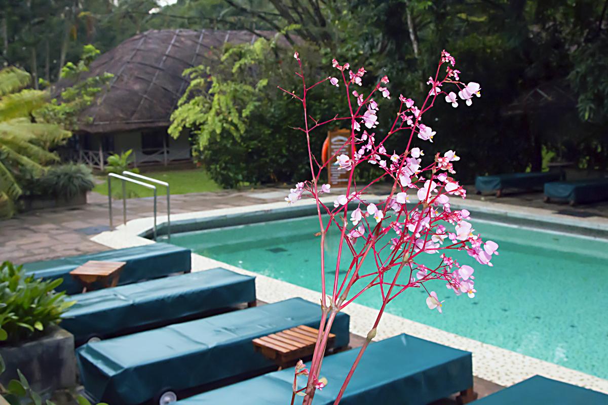INDIEN Hotel Spice Village Ayurveda FINEST-onTour 8104.jpg