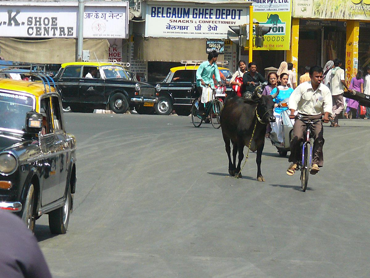 INDIEN MUMBAI Menschen Wohnen FINEST-onTour P1030447.jpg