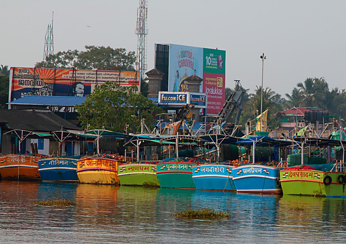 INDIEN Cochin Kerala Menschen Fischmarkt FINEST-onTour 8961.jpg