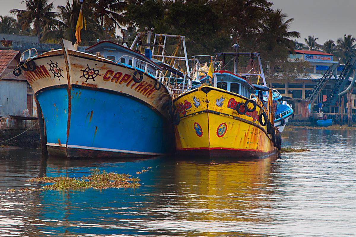 INDIEN Cochin Kerala Menschen Fischmarkt FINEST-onTour 8968.jpg