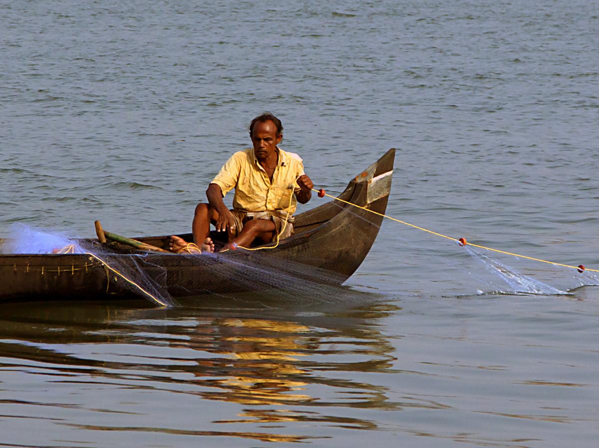 INDIEN Cochin Kerala Menschen Fischmarkt FINEST-onTour 8825-1.jpg