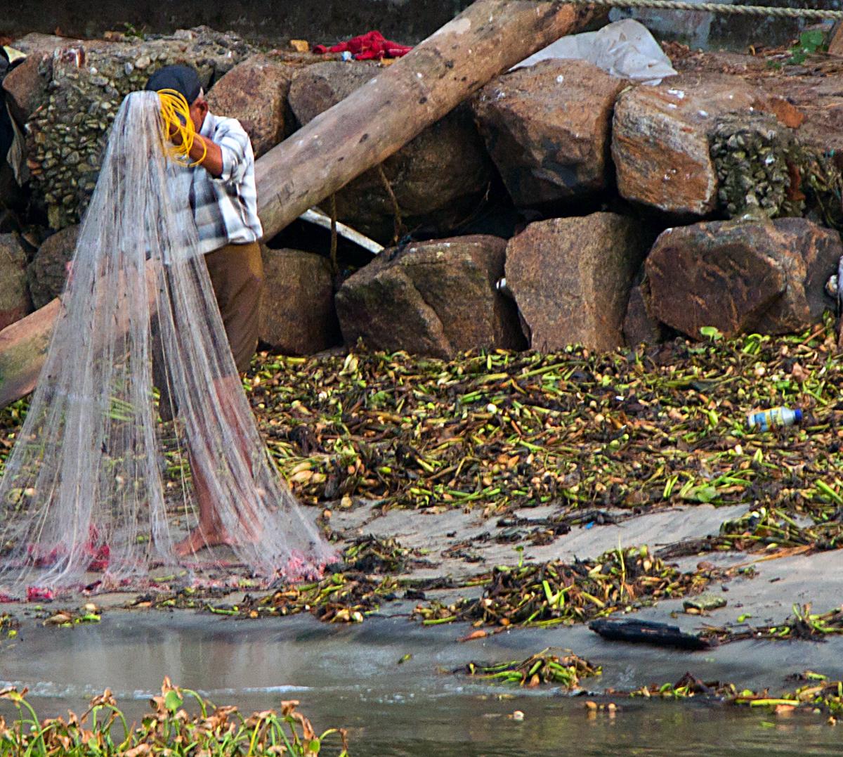 INDIEN Cochin Kerala Menschen Fischmarkt FINEST-onTour 8987.jpg