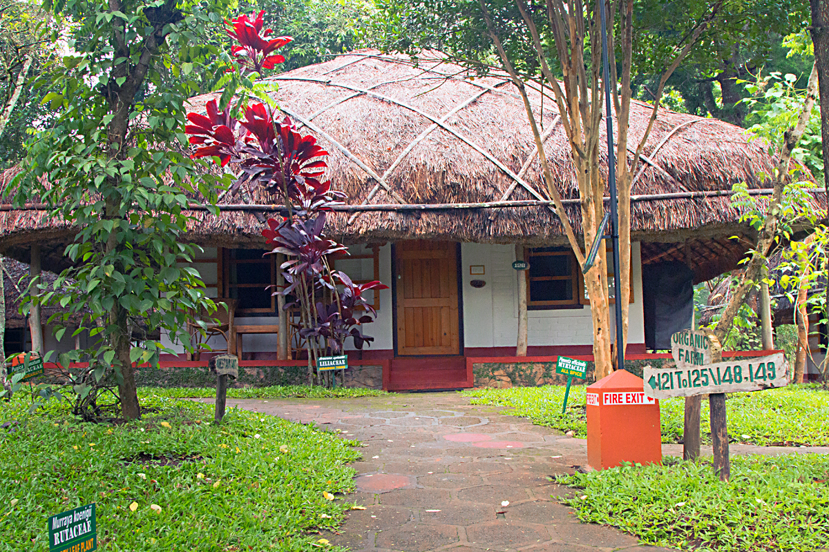 INDIEN Hotel Spice Village Ayurveda FINEST-onTour 8102.jpg