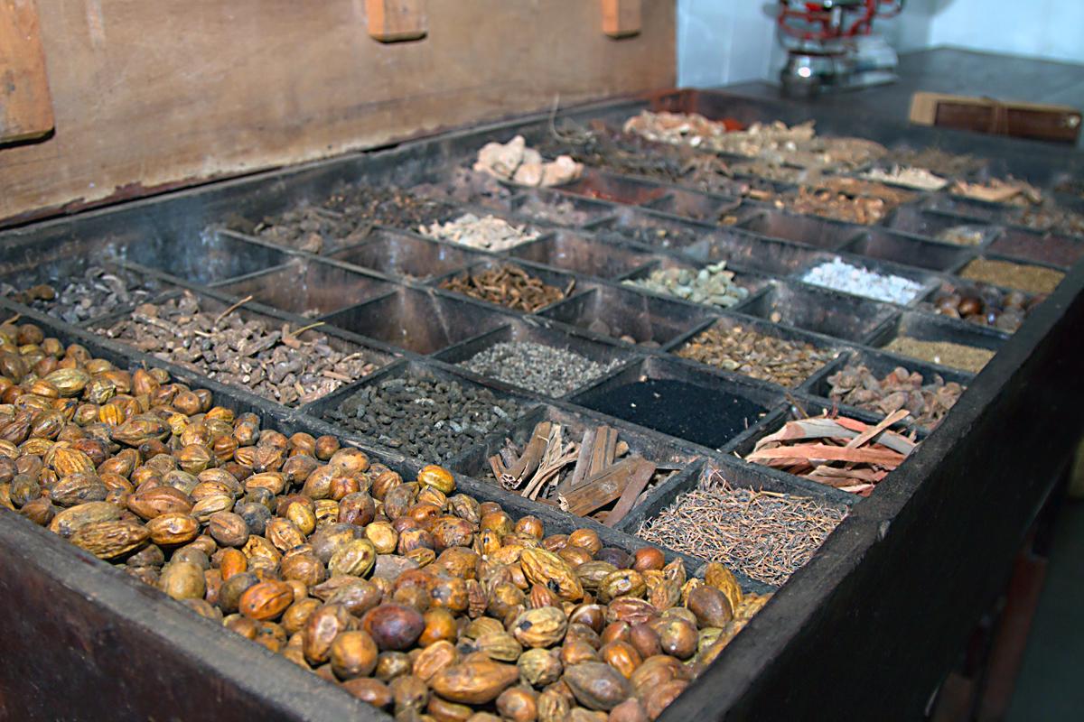 INDIEN Hotel Spice Village Ayurveda FINEST-onTour 8207.jpg