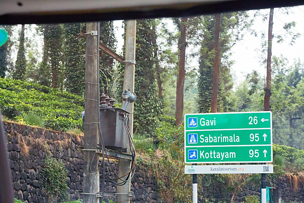 INDIEN Teeplantage FINEST-onTour 8126.jpg