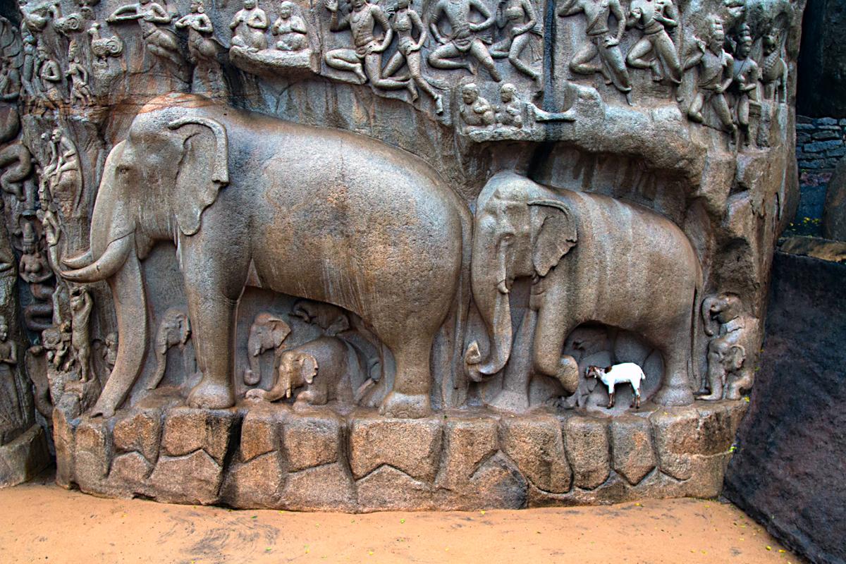 INDIEN Chennai Menschen Tempel FINEST-onTour 7643.jpg