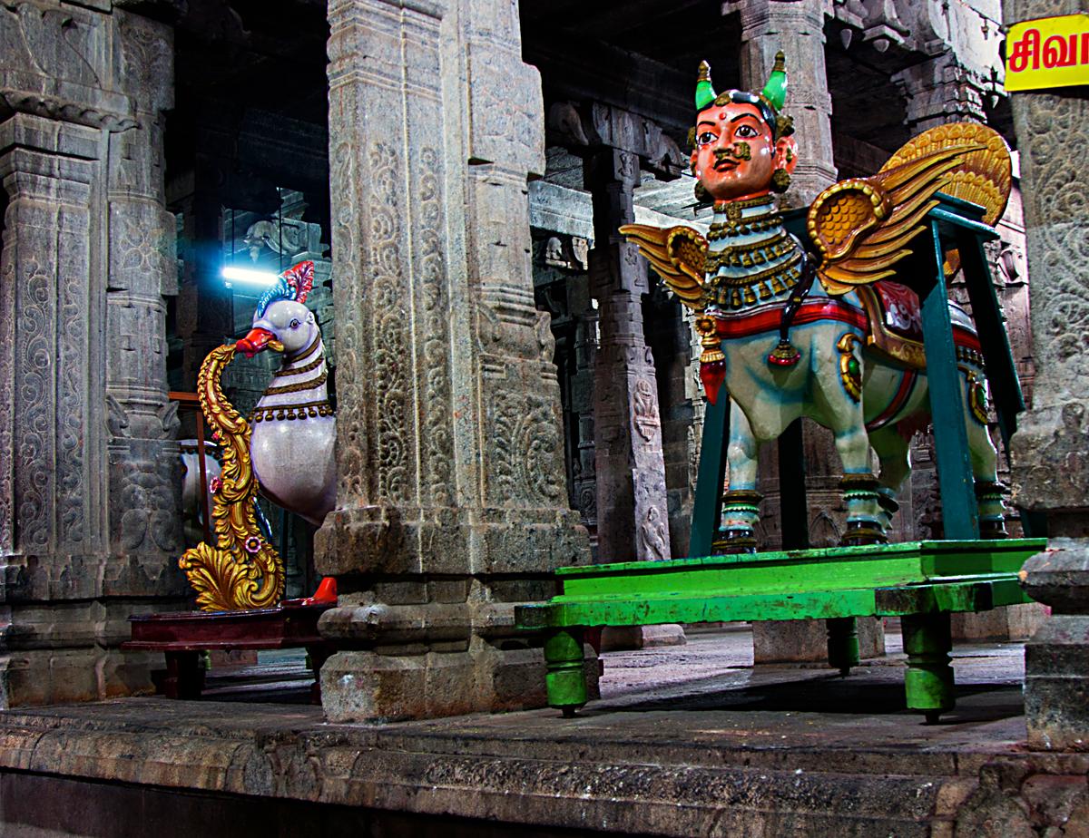 INDIEN Chennai Menschen Tempel FINEST-onTour 7493.jpg