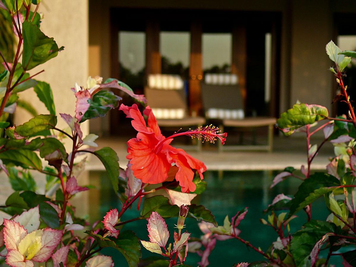 INDIEN GOA Hotel The Leela FINEST-onTour P1030758.jpg