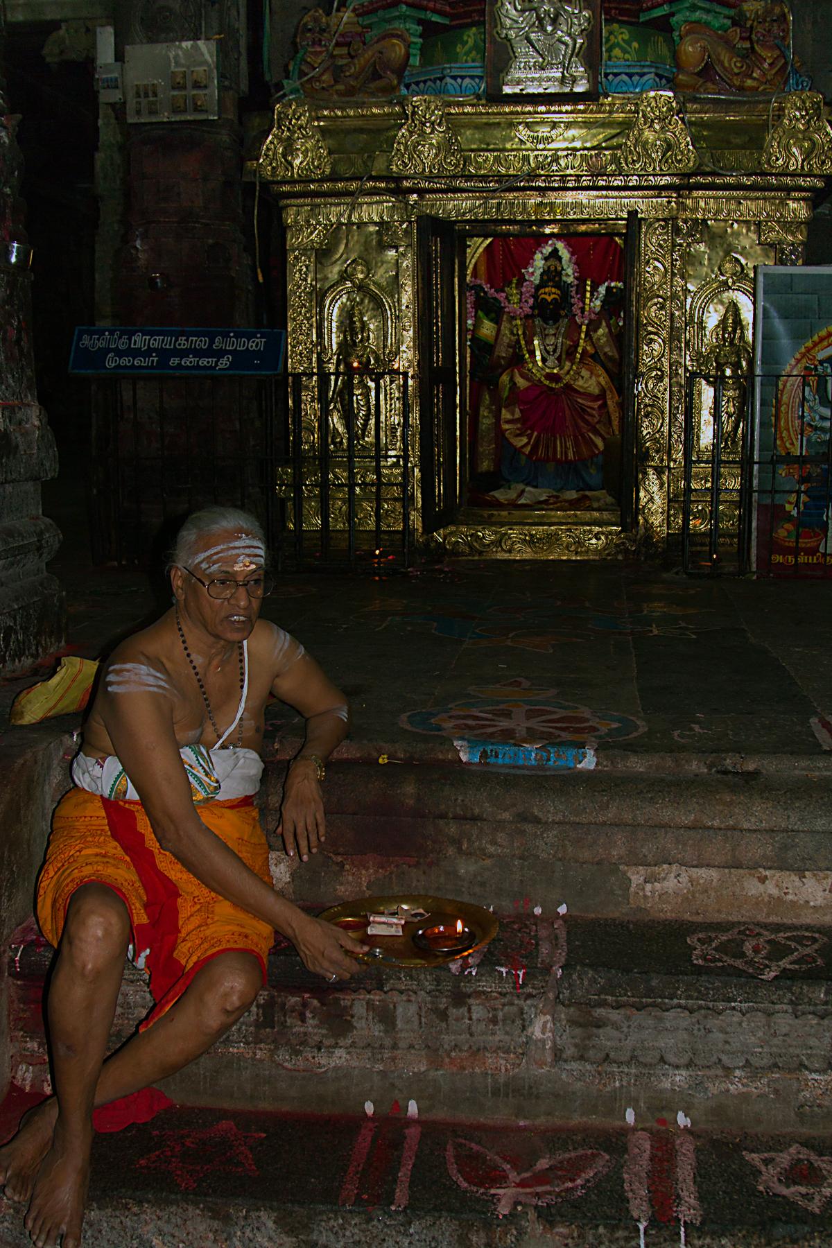 INDIEN Chennai Menschen Tempel FINEST-onTour 7489.jpg
