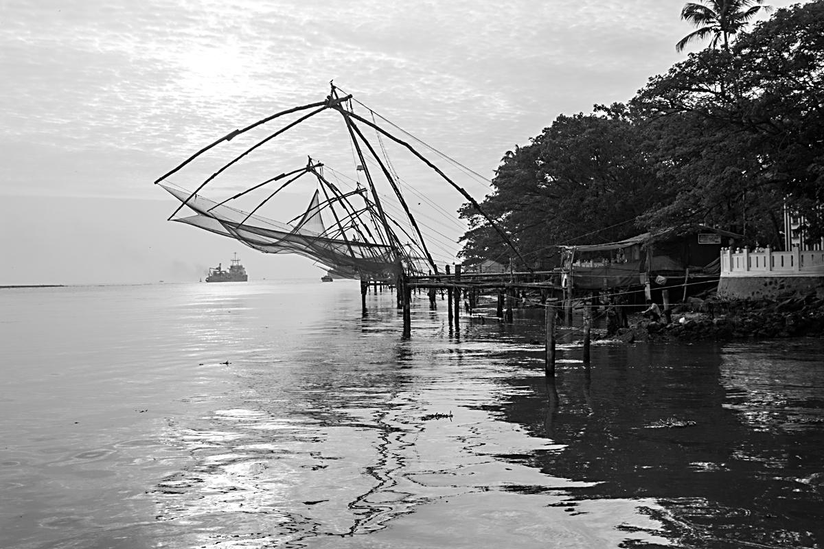 INDIEN Cochin Kerala Menschen Fischmarkt FINEST-onTour 8976.jpg