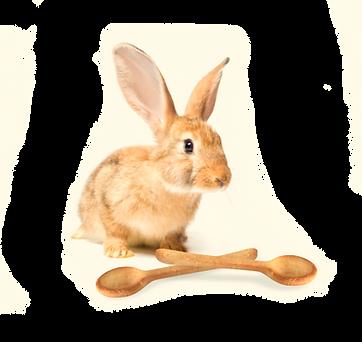Conejo III (Crunchis).png