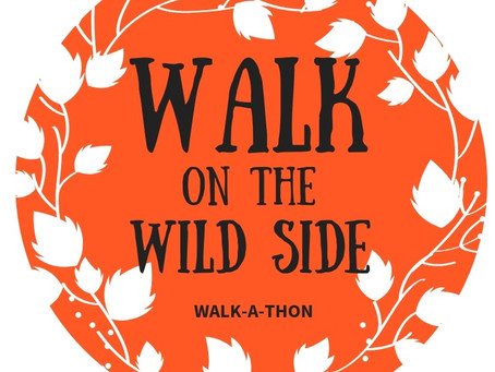 A letter from the PTA president - The Walk-a-thon!