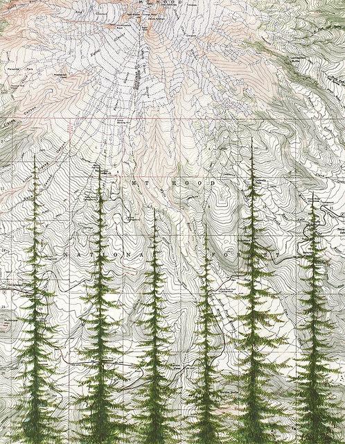 Mt Hood National Forest Print