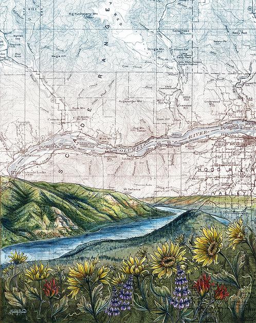 Dog Mountain Bloom, Columbia River Gorge Print