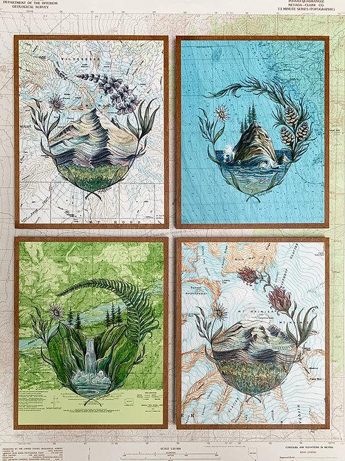 PNW Sticker Series Original Paintings
