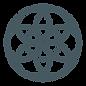 WEB_HCG_Icon_Torus-01.png