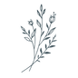 WEB_HCG_Icons_Plant-01.png