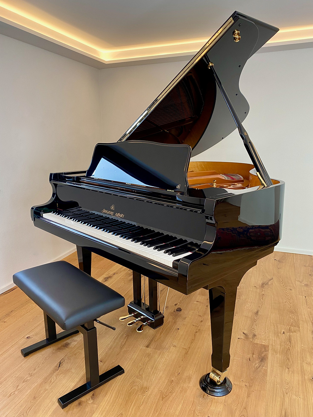 Flügel, Klavier, Piano, Shigeru Kawai SK-2