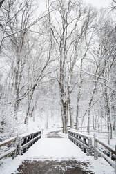 Winter-09.jpg