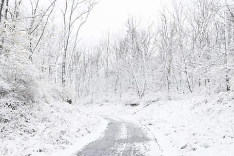 Winter-14.jpg