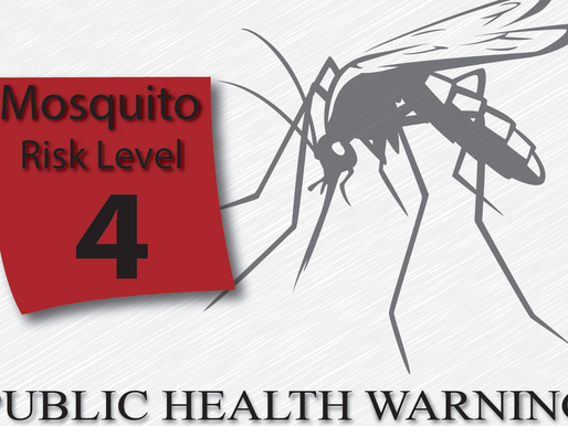 City Entered Risk Level 4 of Mosquito Surveillance and Response Plan