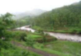 Jawli valley Mahabaleshwar.jpg