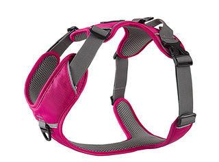 comfort-walk-pro-harness~5.jpg