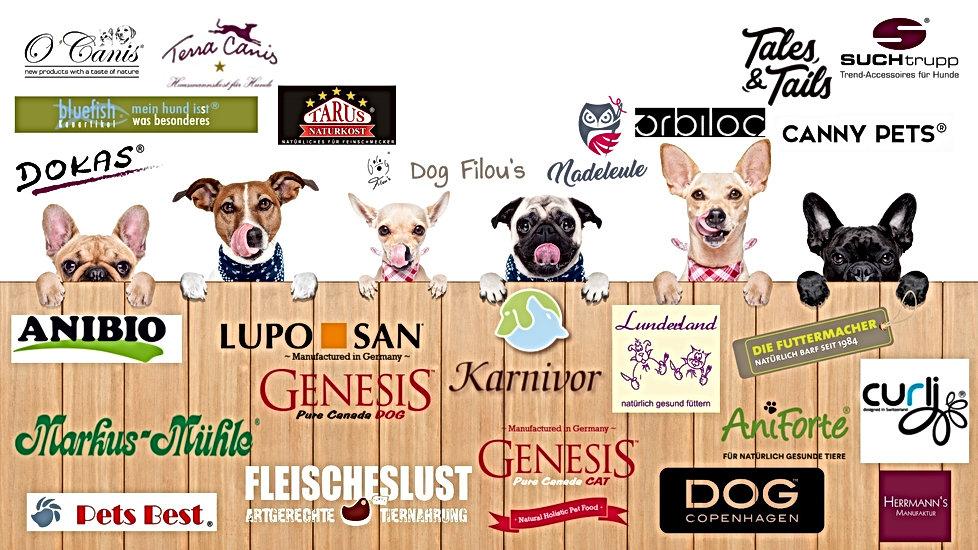 6 Hunde am Zaun neu.jpg
