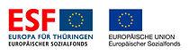 esf-eu-logo-rgb.jpg