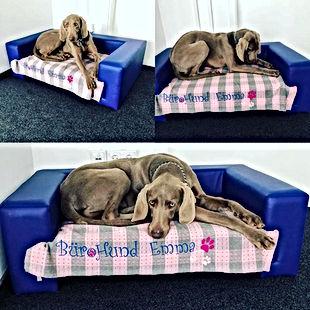 Bürohund Emma.jpg