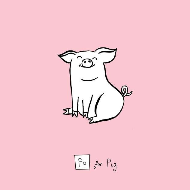 Pp - pig