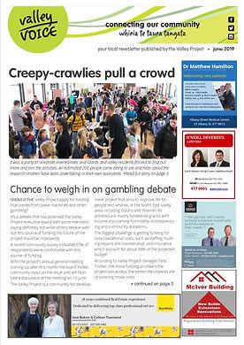 June 2019 Valley Voice community newslet