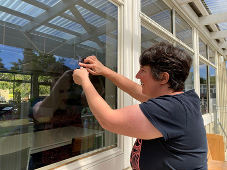 Preventing Window Strike