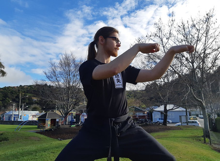 Tiger, crane and dragon: Kung Fu in the valley