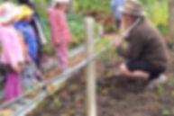 North East Valley Community Garden.jpg