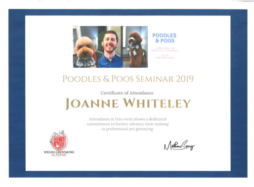 Joanne at Beauty Petz Attends Poodle and Poos Seminar in Huddersfield