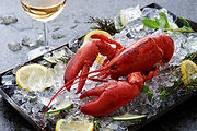 fresh-lobster-ice-lemon-glass-wine-51868