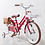 "Thumbnail: iimo 16' / 18"" Kids Bike (Eternity Red, Gentle White )"