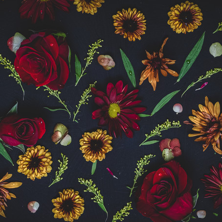 Florals / From the Top