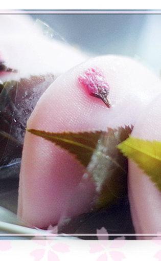 河津桜祭季節限定さくら満開餅5個入