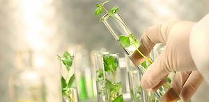 greenchemicals--e1603282063375.jpg