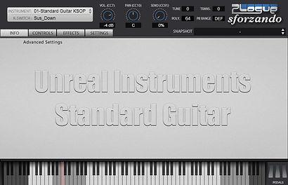 Standard_Guitar1.jpg