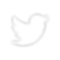 Twitter_Logo_WhiteOnImage_edited.png