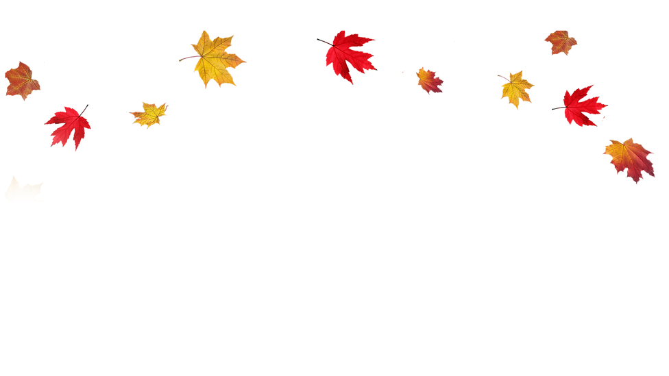 fall-png-background-3.png