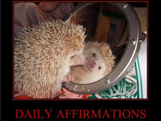 Doggone it, why aren't these  affirmations working?