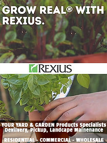 REXIUS-300.jpg